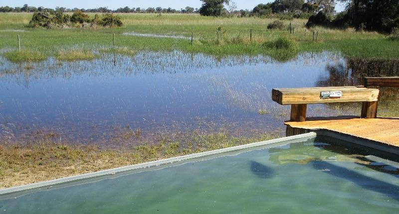 The flood waters in from of Camp Okavango in the Okavango Delta