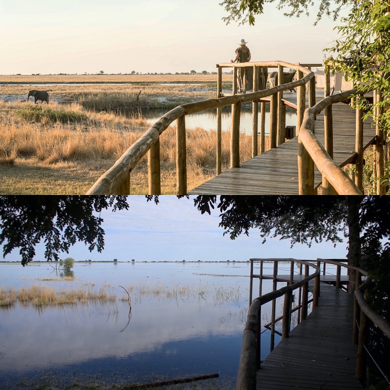 The changing levels of the Chobe River from Chobe Savanna Lodge