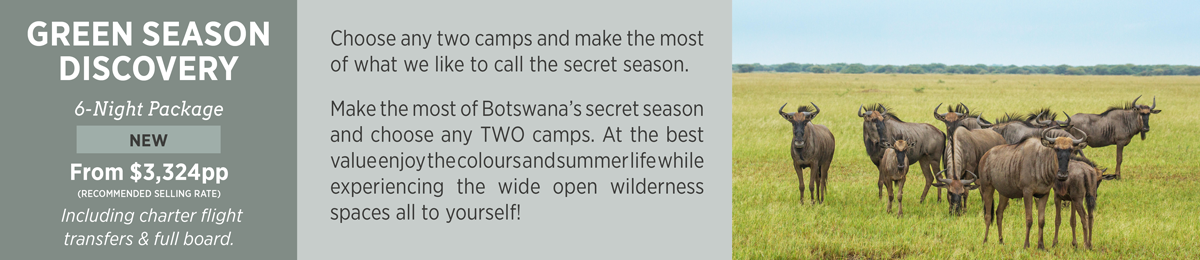 Purchase a Green Season Discovery Package to Botswana