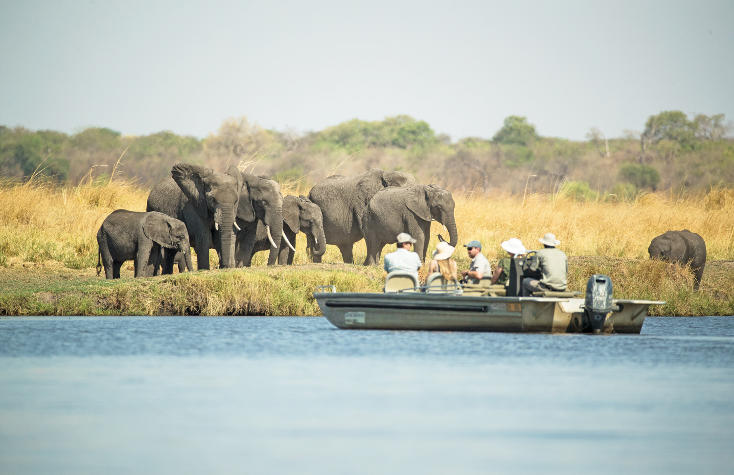 Tourists enjoying incredible elephant sightings on the Chobe River