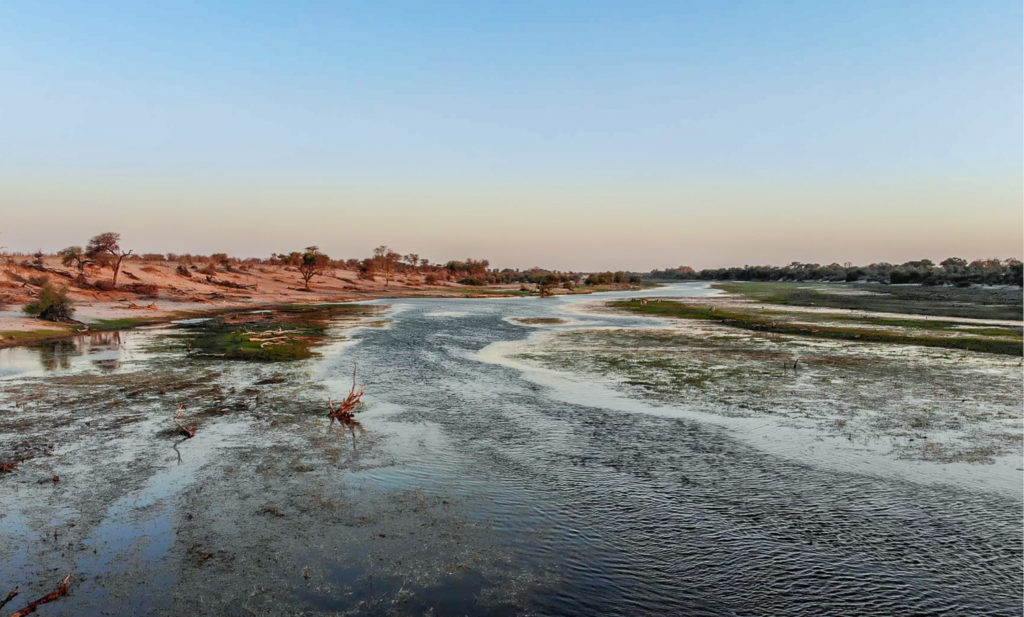 The Boteti River in the late afternoon - October 2020